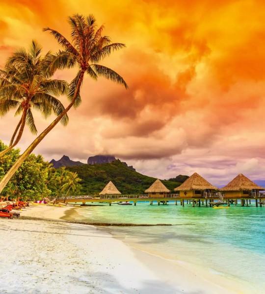 Vliestapete Polynesien 225x250