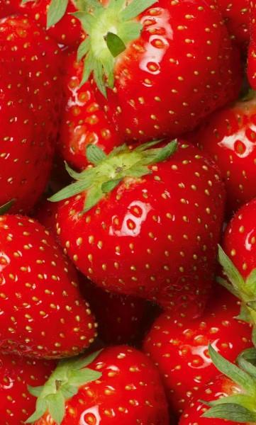 Vlies Fototapete Erdbeeren 150x250