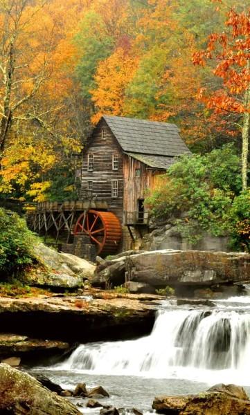 Vlies Fototapete Waldmühle 150x250