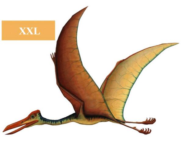 Wandsticker Flugsaurier Quetzalcoatlus XXL Größe