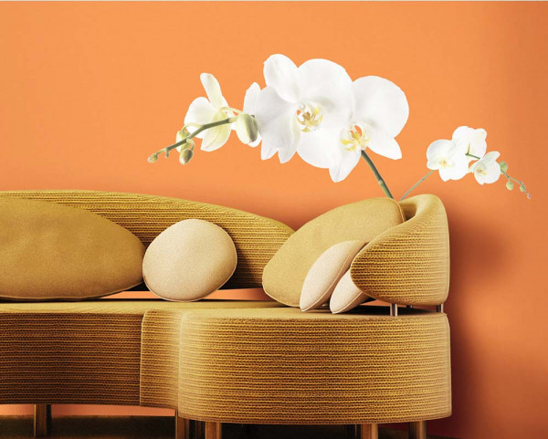 Wandsticker Weiße Orchidee Wohnzimmer