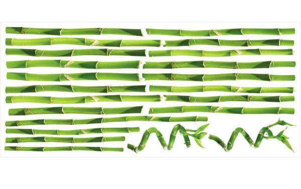 Wandsticker Wandtattoo Bambus