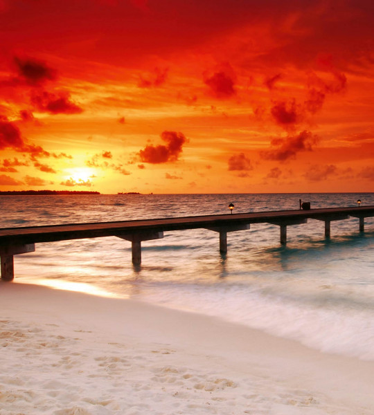 Vliestapete blutroter Sonnenuntergang 225x250Vliestapete blutroter Sonnenuntergang 225x250