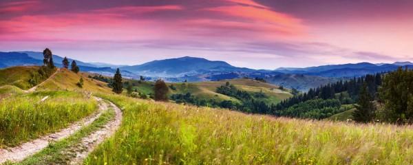 Panorama Vliestapete blühende Hügel 375x150
