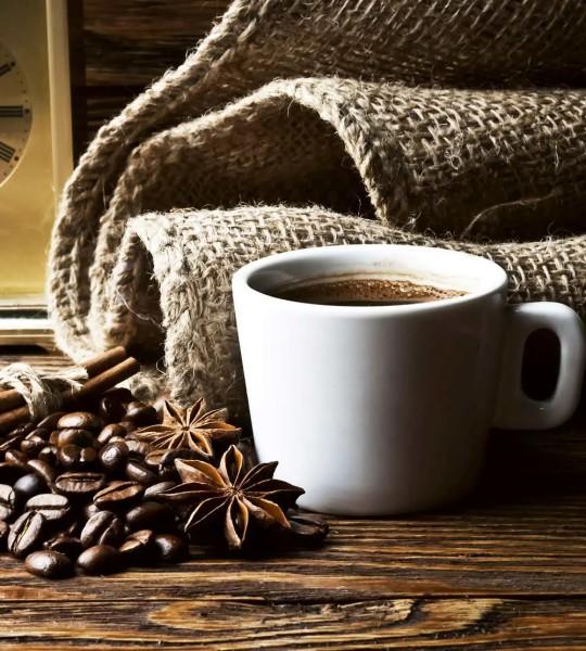 Vliestapete Tasse Kaffee 225x250