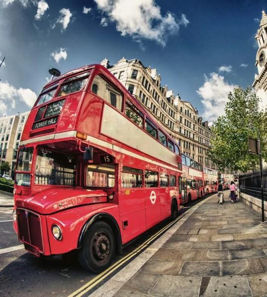 Vliestapete Doppeldecker Bus 225x250