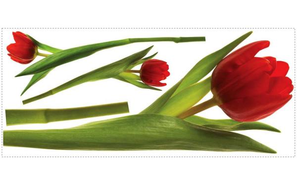 Wandsticker Tulpen