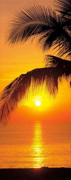 Türtapete Sonnenuntergang unter Palmen
