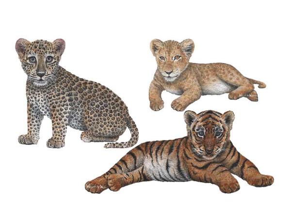 Wandsticker Dschungelwelt Raubkatzenbabys