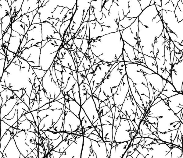 Vliestapete 3D-Optik Zweige weiß