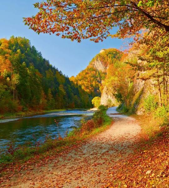 Vliestapete Am Fluss 225x250