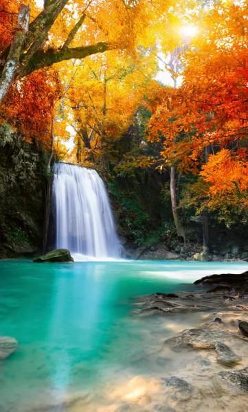 Vlies Fototapete Wasserfall im Wald 150x250