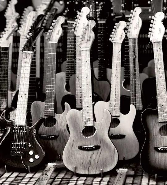 Vliestapete Gitarren 225x250