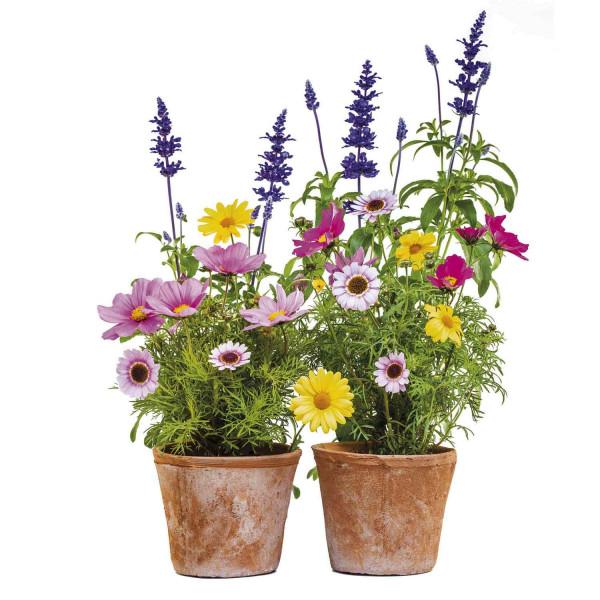 Fenstersticker Blumentopf