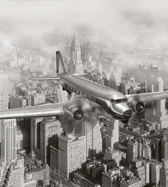 Vliestapete Flugzeug über New York 225x250