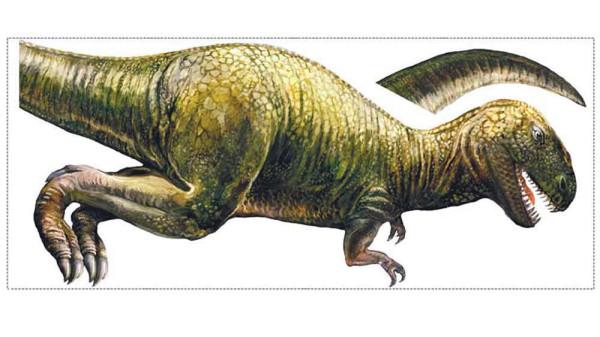 Wandsticker Dinosaurier T.Rex