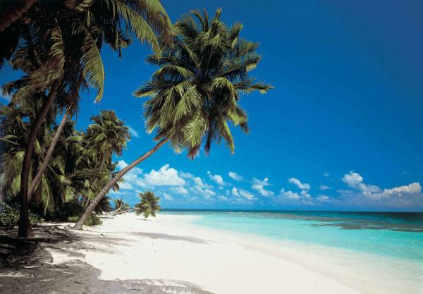 Fototapete Malediven Urlaubsstrand