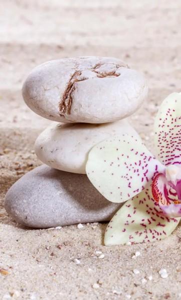 Vlies Fototapete Zen Balance 150x250
