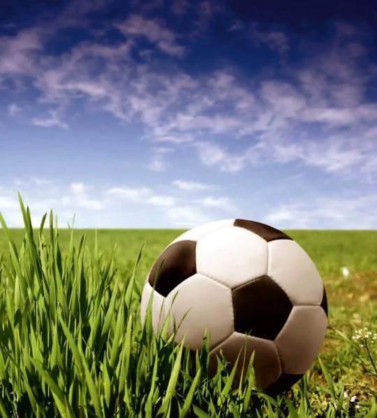Vliestapete Fußball 225x250