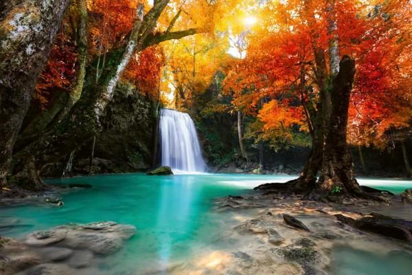 Vliestapete Wasserfall im Wald 375x250