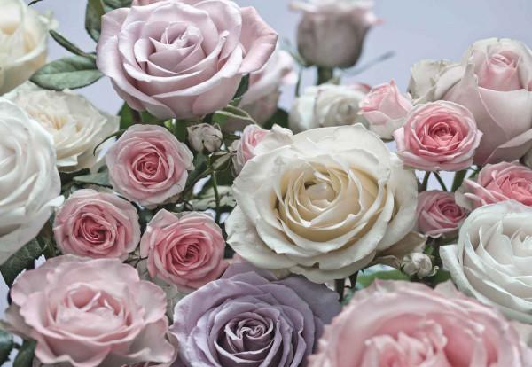 Fototapete romantischer Rosenstrauß