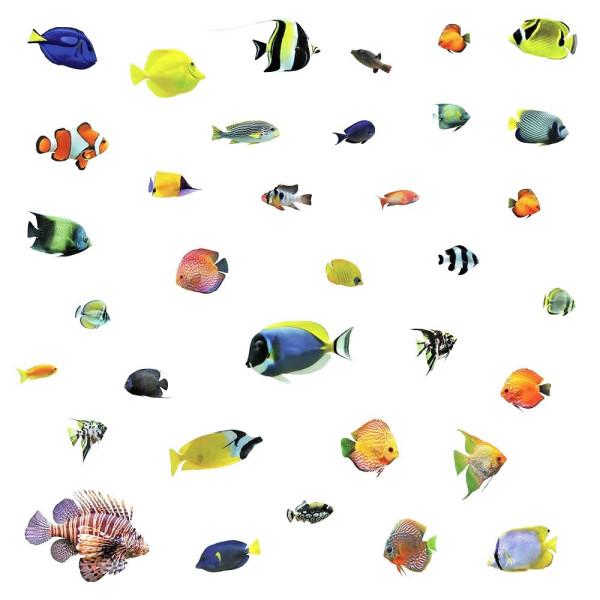 Wandsticker tropische Fische Unterwasserwelt