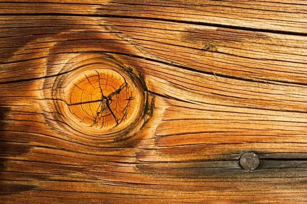 Vliestapete Holz Astloch 375x250