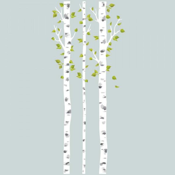 Wandsticker Baum weiße Birkenstämme