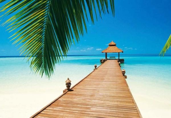 Fototapete Wandbild Strandparadies Paradise Beach