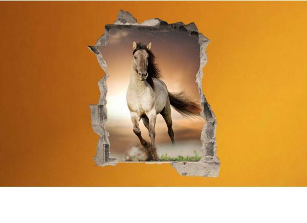Wandsticker 3D-Optik Pferd Freiheit