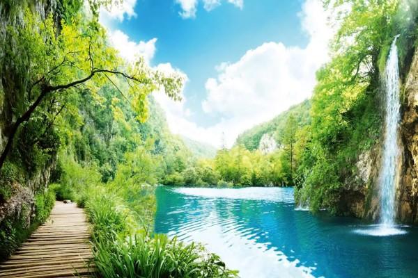 Vliestapete Wald Wasserfall 375x250