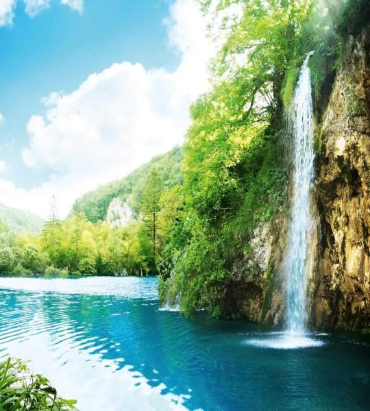 Vliestapete Wald Wasserfall 225x250