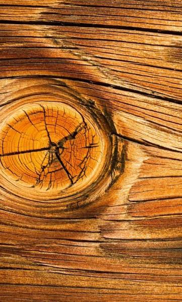 Vlies Fototapete Holz Astloch 150x250