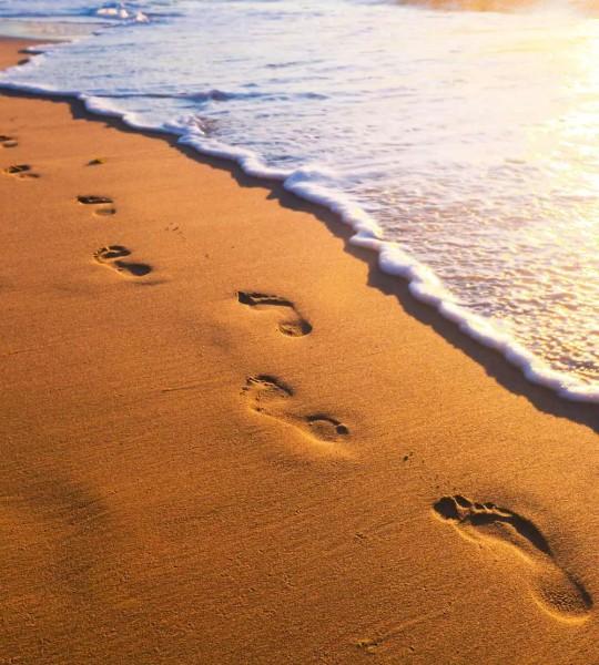 Vliestapete Spuren im Sand 225x250