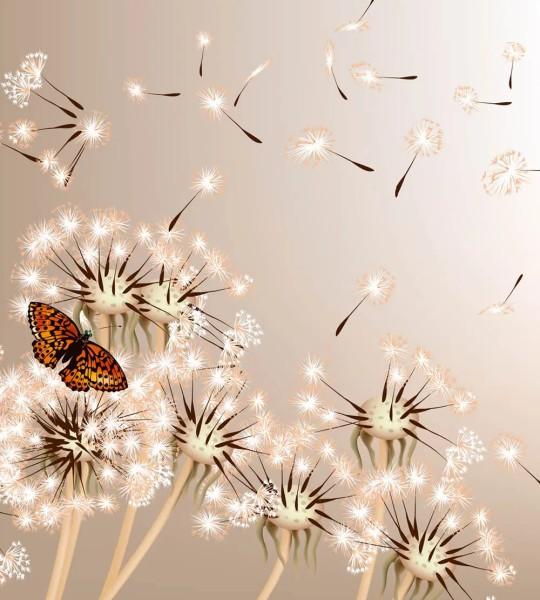 Vliestapete Pusteblume und Schmetterling 225x250