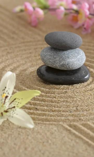 Vlies Fototapete Zen Garten 150x250