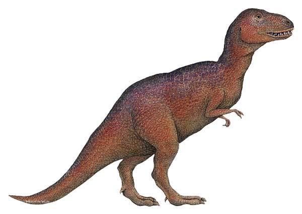 Wandsticker Dinosaurier Tytannosaurus Rex