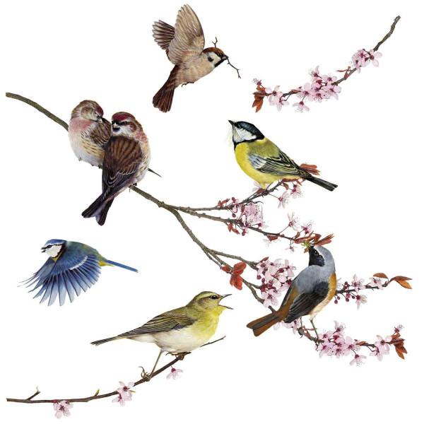 Fensterbilder Singvögel