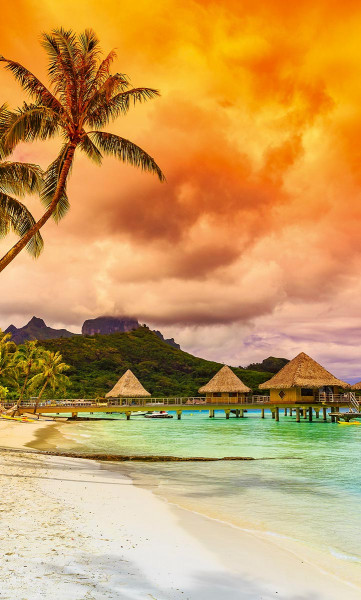 Vlies Fototapete Polynesien 150x250
