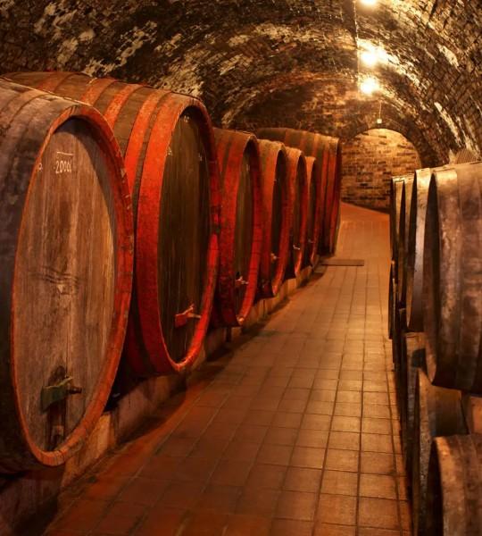 Vliestapete Weinfässer 225x250