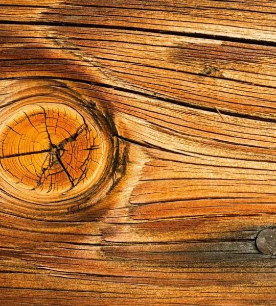 Vliestapete Holz Astloch 225x250
