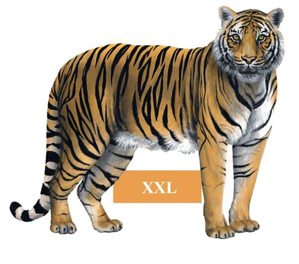 Wandsticker Dschungel Tiger Raubkatze