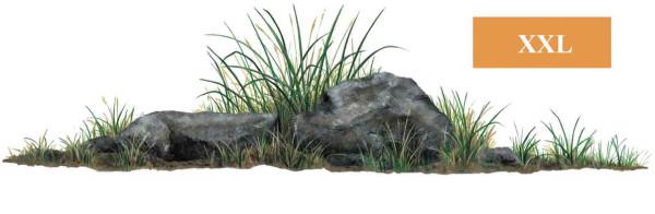 Walls of the Wild Wandsticker Dschungel Pflanze Gras Steine