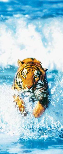 Türtapete Fototapete Türposter bengalischer Tiger