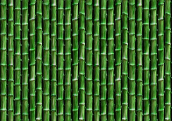 Fototapete Bambus Dschungel