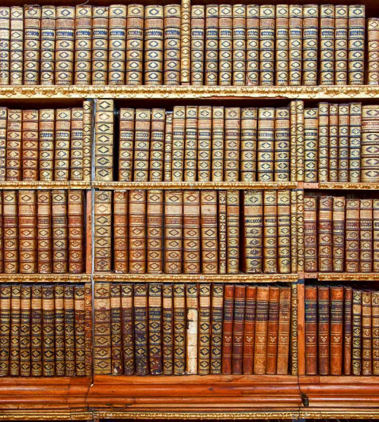 Vliestapete Bibliothek 225x250
