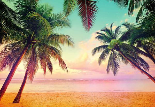 Fototapete Miami Florida