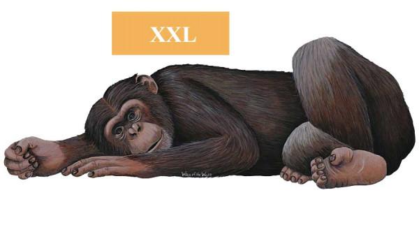 Walls of the Wild Wandsticker Regenwald Affe Schimpanse