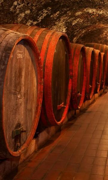 Vlies Fototapete Weinfässer 150x250