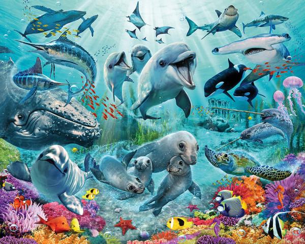 Fototapete Unterwasserwelt Meerestiere Fische